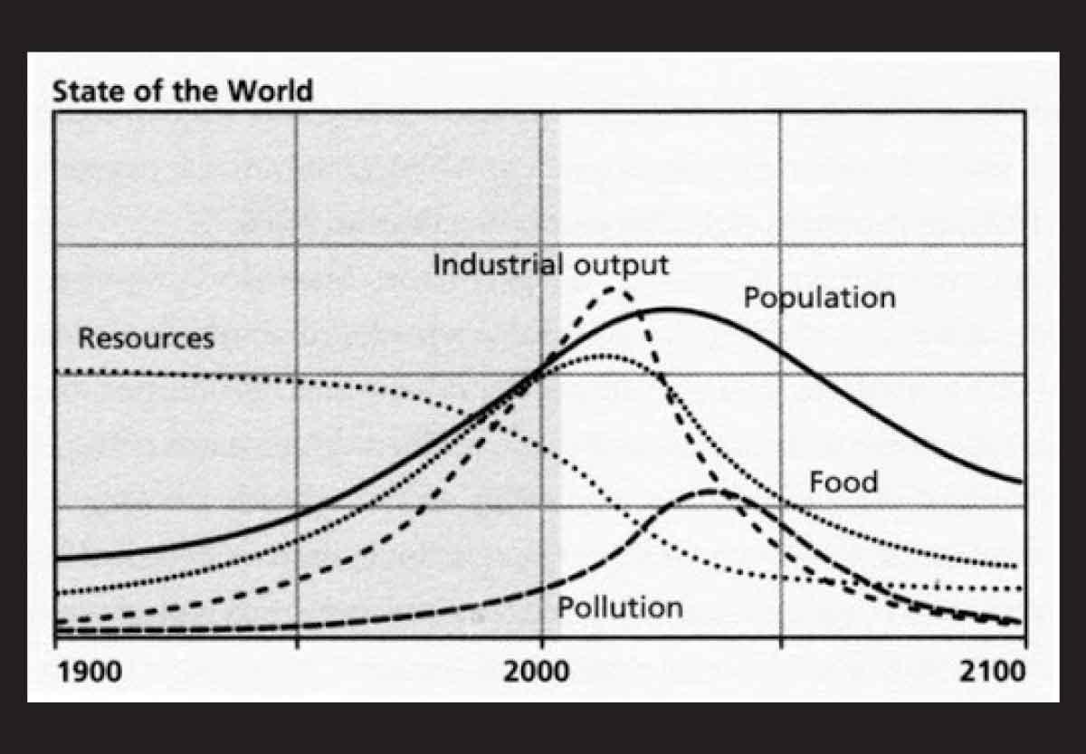i limiti dello sviluppo modello World3